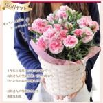 母の日2016。送料無料・通販で買えるおすすめお花ギフトを厳選!