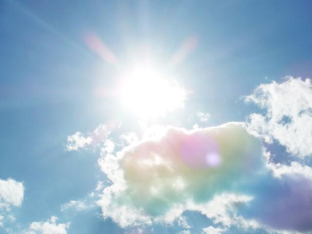 夏の強い太陽の日差し