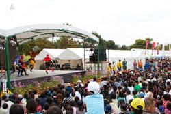 福岡・水巻町コスモスまつり2016