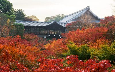 出典 http://www.tofukuji.jp/function/viewing_of_autumn_leaves.html