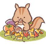 栗やどんぐりを食べるリス